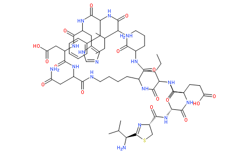 Bacitracin Featured Image